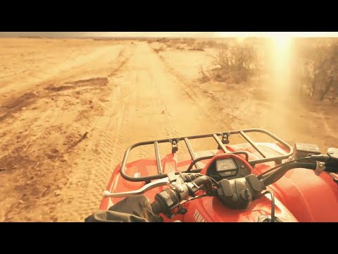 Desert and Palm Grove Quad Bike Tour from Marrakech, Morocco