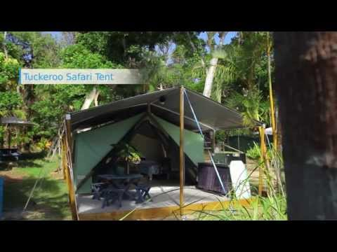Tuckeroo Safari Tent - Byron Bay
