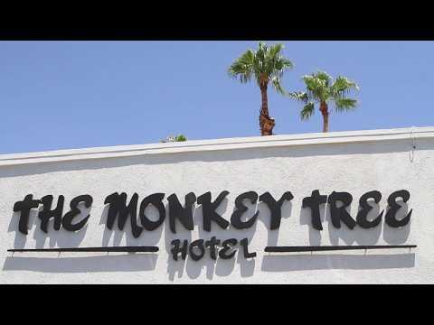 The Monkey Tree Hotel Video Tour