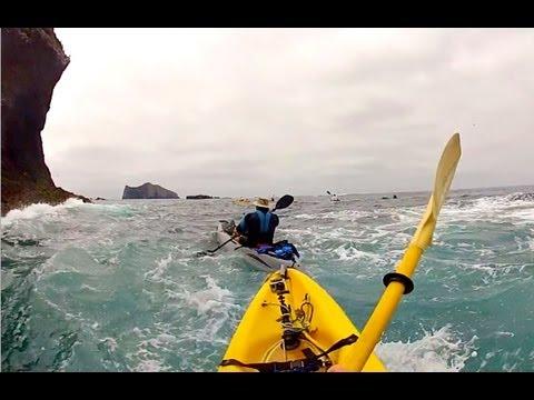 Santa Barbara Island: Kayaking, Camping, Snorkeling, Hiking and Sea Lions