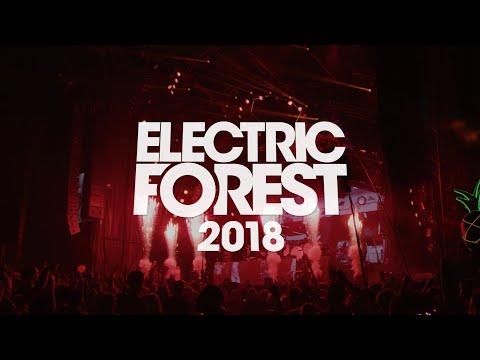 #ForestFamily Forever - An #EF2018 Highlight