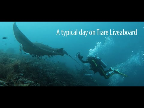 Welcome To Tiaré Cruise! A Typical Day Cruising Indonesia