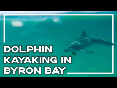 Ocean Kayaking With Dolphins In Byron Bay, Australia (GoPro Edit) 🐬
