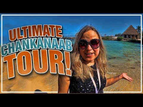 🐬 Chankanaab Beach Adventure Park   Cozumel, Mexico   Snorkeling   Ultimate Tour