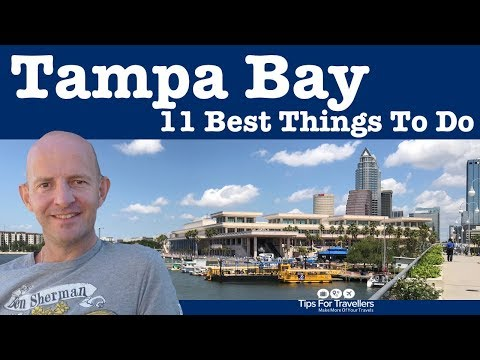 11 Best Things to Do in Tampa Florida