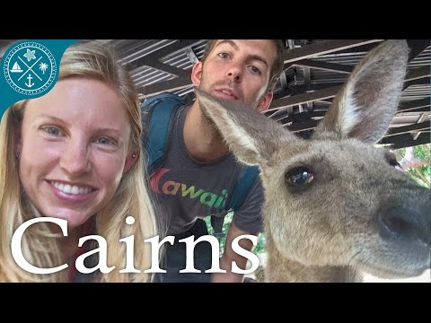 Visiting Cairns Australia! - Tons of crazy nature & animals!