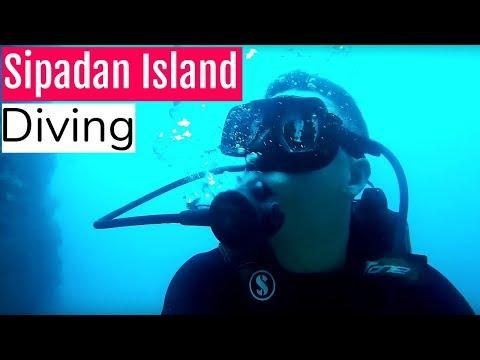 Sipadan Island Malaysia | AMAZING DIVING!