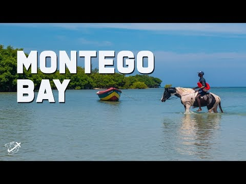 Top 15 Things to do in Montego Bay | The Planet D | Jamaica Travel Vlog