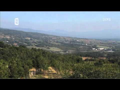 Villa Scacciapensieri su DOVE tv