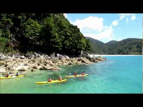 Your Guide to Nelson - New Zealand