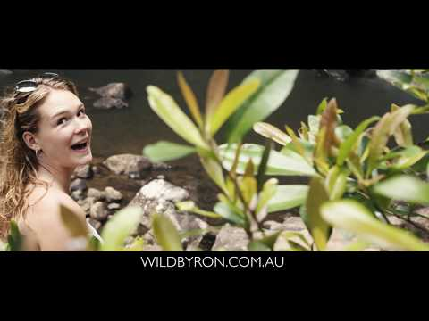 WILD BYRON RAINFOREST TOUR