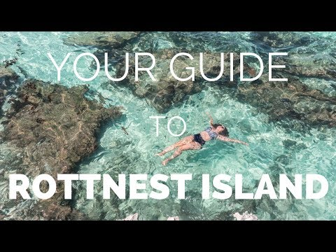 ROTTNEST ISLAND - How to Make the Most of your Day Trip from Perth