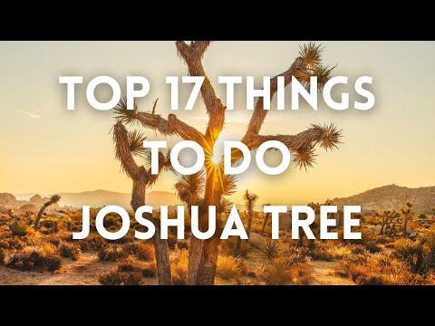 Joshua Tree - Top Things To Do Joshua Tree NP - Best of Joshua Tree National Park - Stargazing