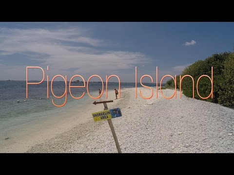 Pigeon Island Paradise of the Sri Lanka