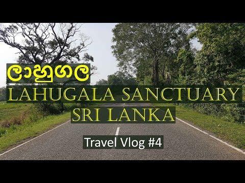 Road to Lahugala Sanctuary National Park in Sri Lanka - Travel Vlog #4 - LifeVlogSriLanka