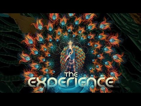 The Experience Festival 2018-19