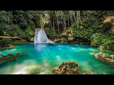Introducing Jamaica