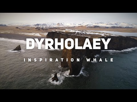 Dyrholaey Iceland: the home of black sand beach | The amazing Planet Earth