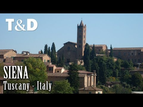 Siena, Italy 🇮🇹 Tourist Guide To Siena Travel Video