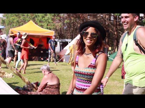 New Zealand Music Festival Highlight