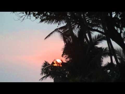 Surfing Lanka: Midigama
