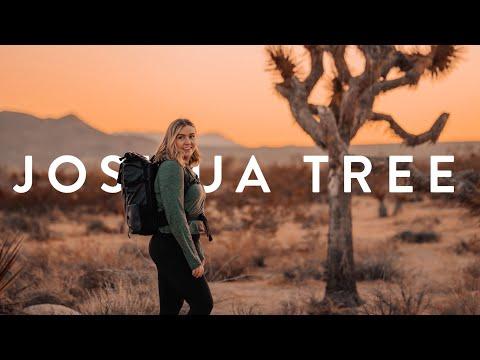 My Solo Trip to Joshua Tree