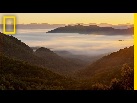 Best Of Great Smoky Mountains National Park | America's National Parks