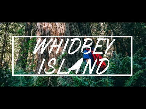 WHIDBEY ISLAND IN 4K
