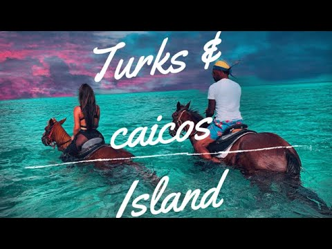 [Turks and Caicos Island!]The most amazing Beach/Food/water/adventure/Vacation/Island in the World!