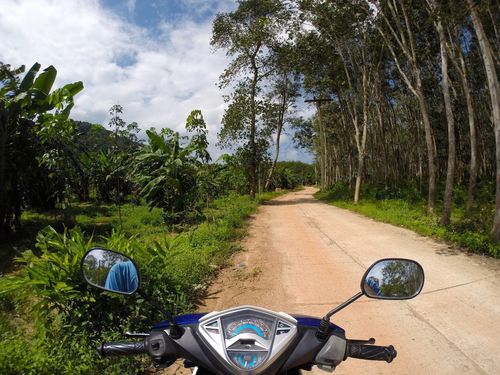 Koh Tao Moto Rental - Things to do on Koh Tao, Thailand
