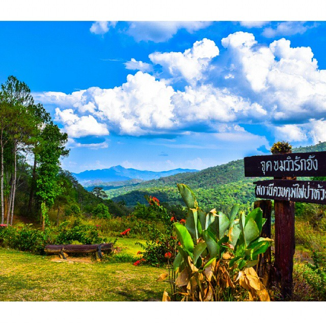 One of the many view points on the drive back from Pai to Chiang Mai. Such an amazing moto ride.