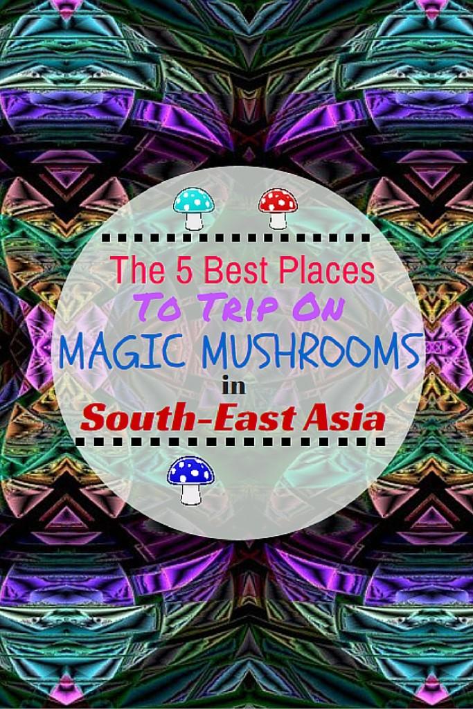 Magic Mushroom in South-East Asia!