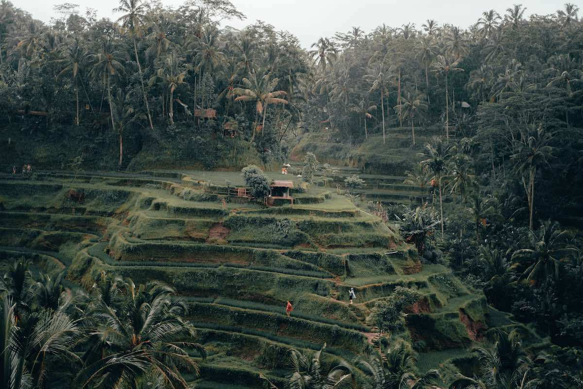 3 Days Ubud Itinerary