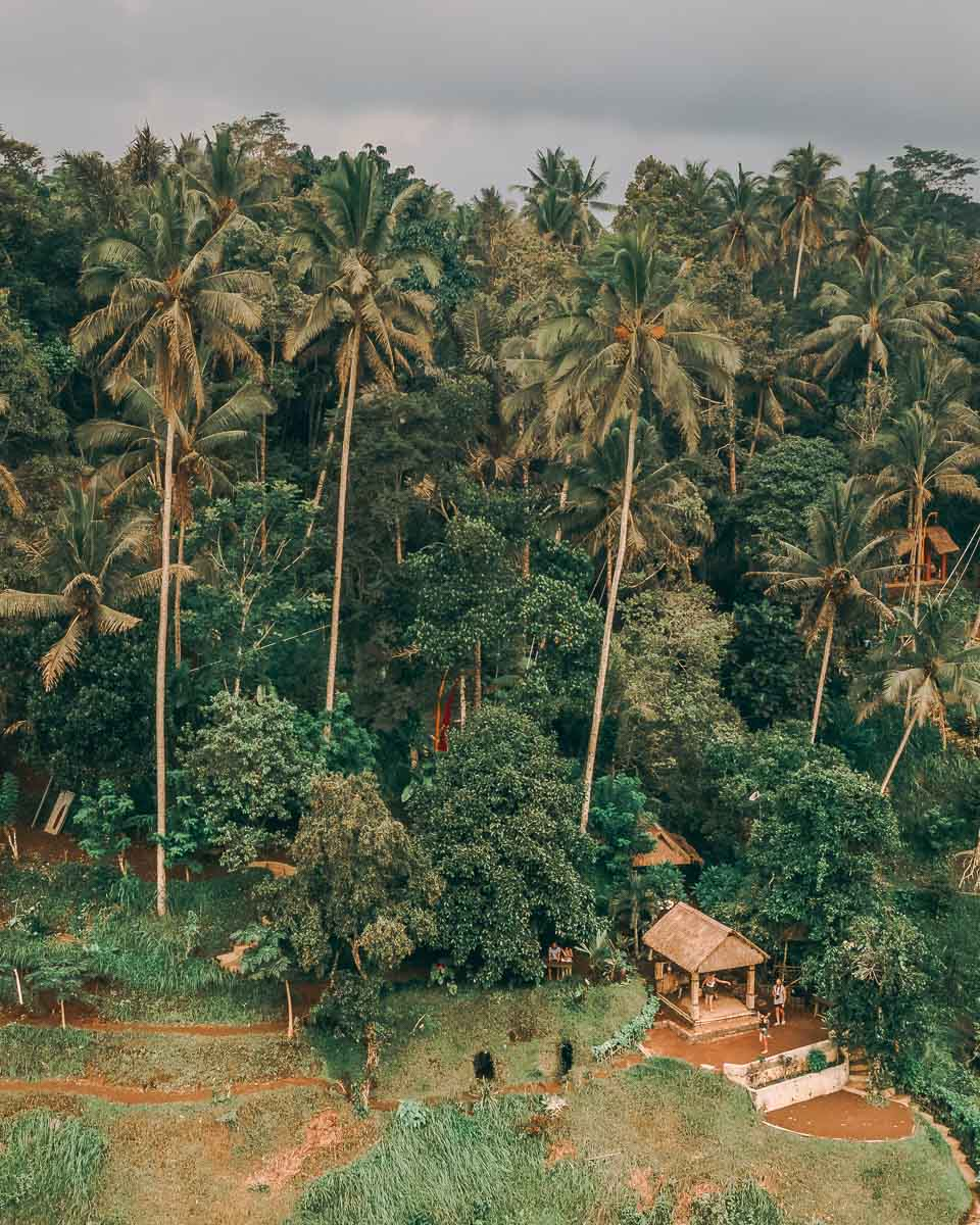 Ubud Itinerary | Things to do