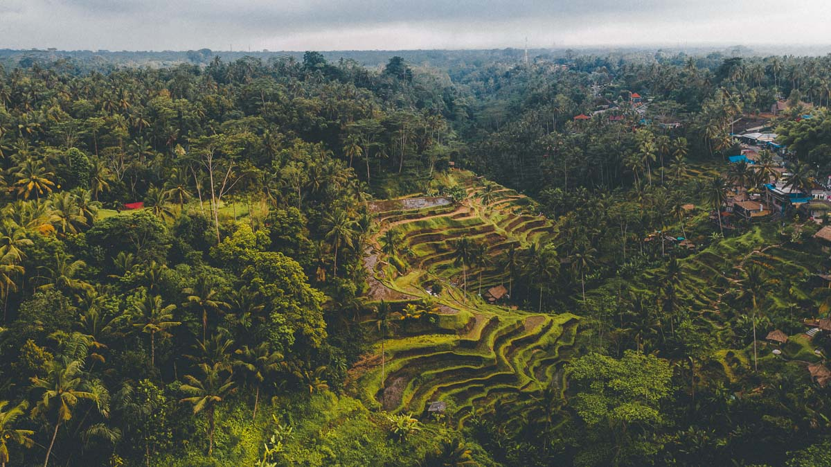 Ubud Itinerary
