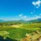 Best Hostels in Pai, Thailand