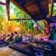 Day Zero - Music Festivals in Mexico 2020