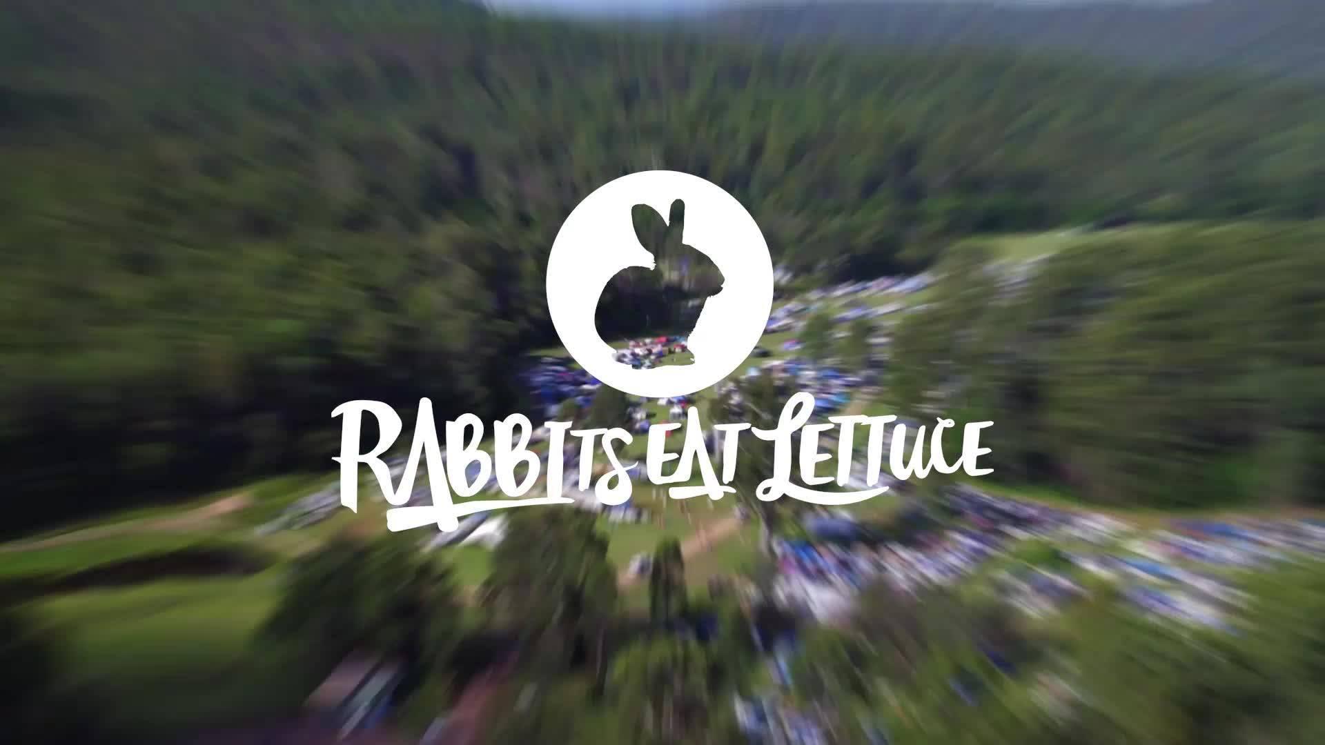 Rabbits Eat Lettuce Festival Byron Bay