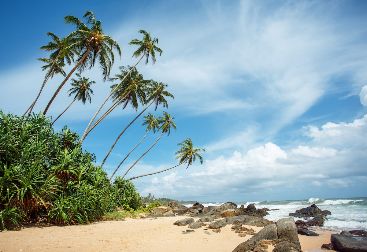 Best Tropical BEaches Sri Lanka