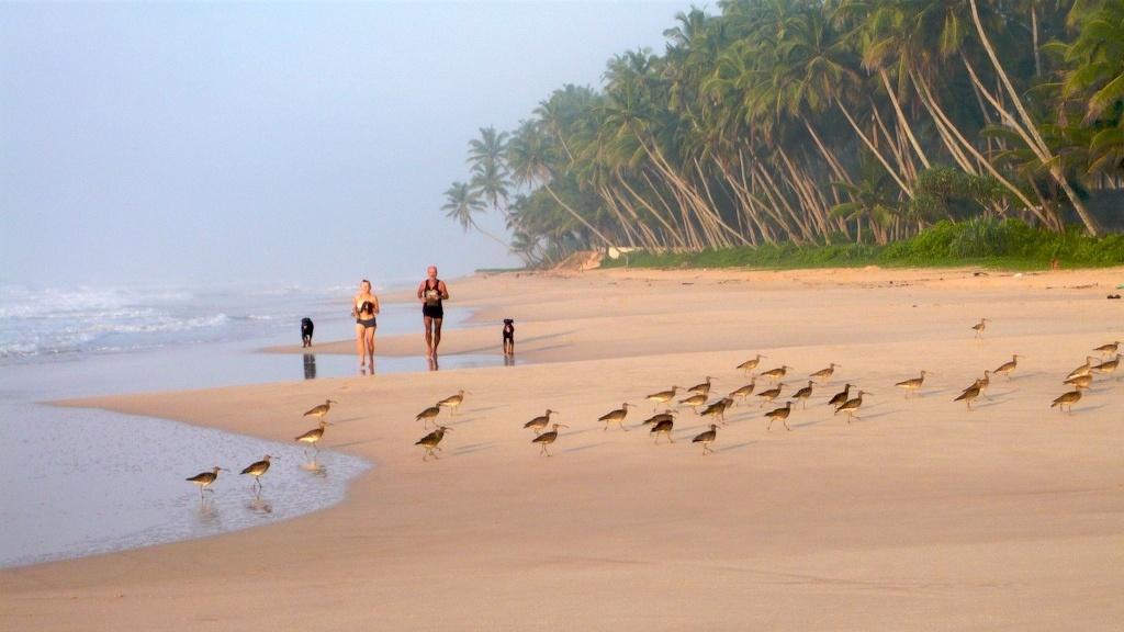 Koggala Beach Sri Lanka