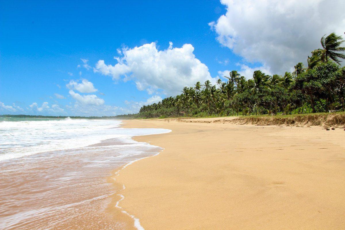 Rekawa Beach Sri Lanka Tangalle