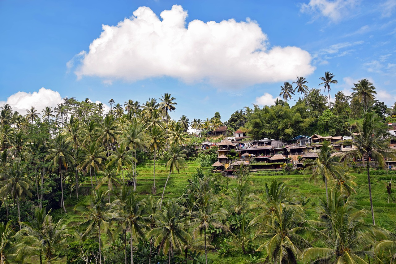 3 Days in Ubud Itinerary