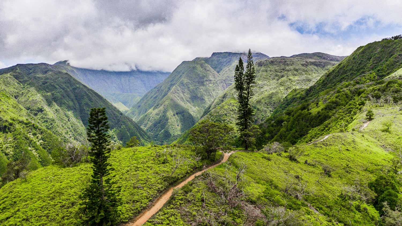 Waihee Ridge Trail - Maui Itinerary