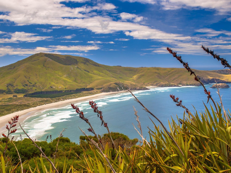 Otago - New Zealand South Island Road Trip