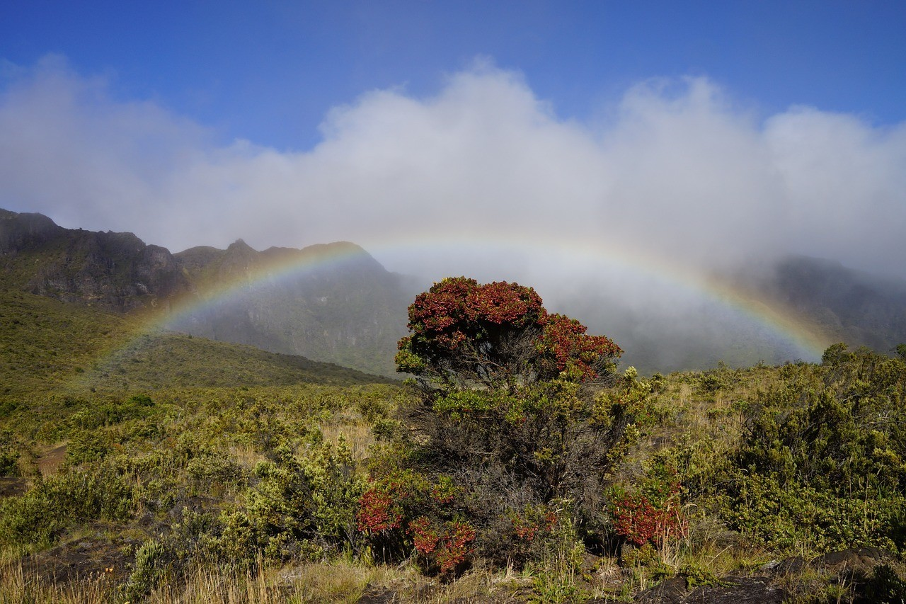 Rainbow - Maui Itinerary