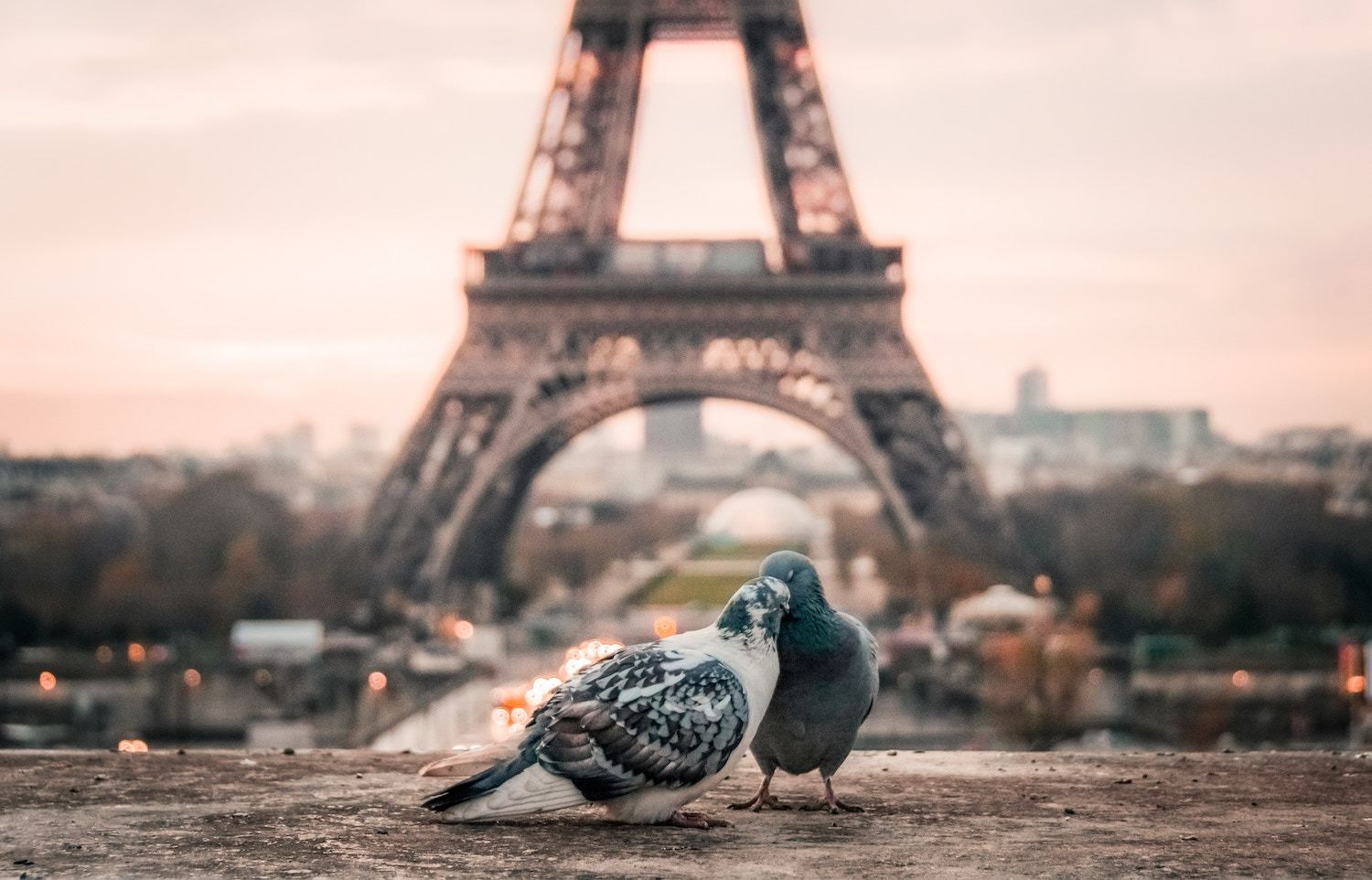 Things to do in Paris in 2 Days
