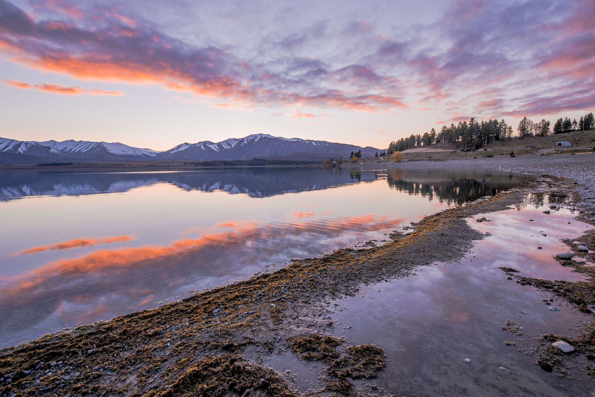 new zealand south island road trip costs
