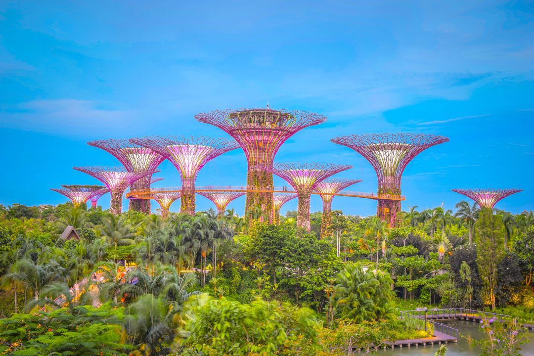 Gardens By The Bay - Singapore Itinerary