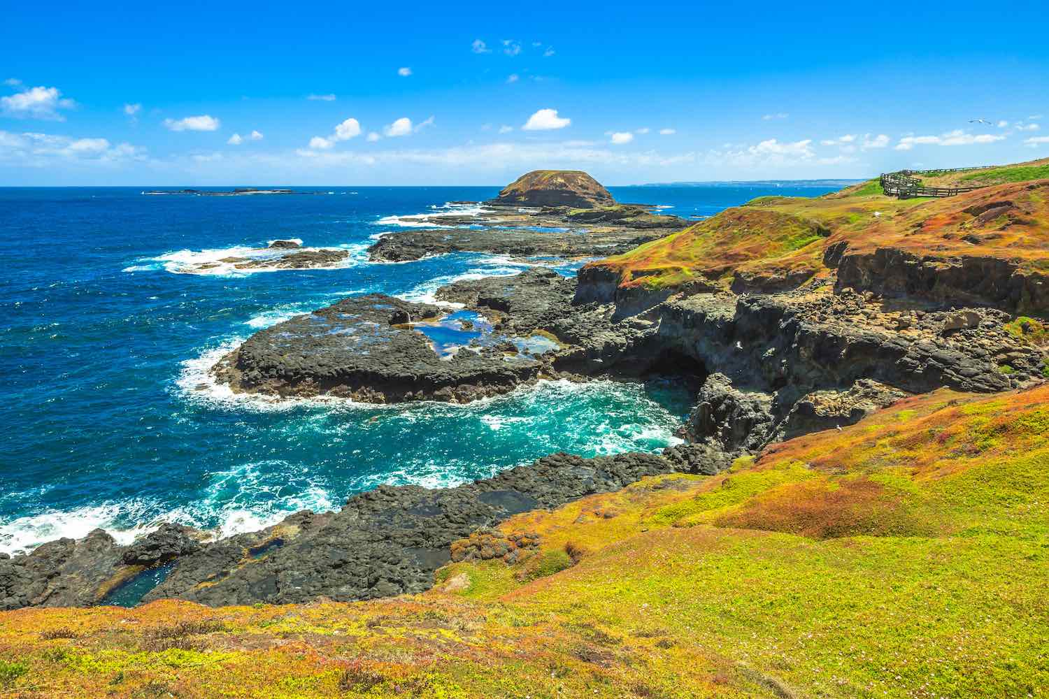 Phillip Island - Day trips from Melbourne