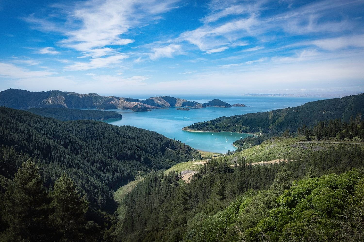 Picton New Zealand - Things to do in Wellington